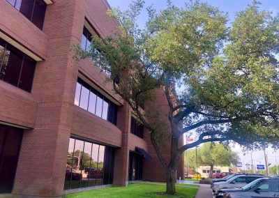 Commercial Office Leasing with Beautiful Exterior and Landscaping
